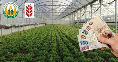 Sadece Türkiye'deki tarımsal üretim faaliyetleri için yatırım ve işletme kredisi verilecek.